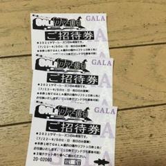 "Thumbnail of ""ガーラ湯沢 サマーパーク招待券"""