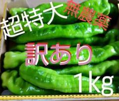 """Thumbnail of """"☆無農薬☆ジャンボ青唐辛子 ★訳あり曲がり混合 野菜 1㎏☆"""""""