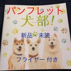 """Thumbnail of """"犬部! 林遣都 中川大志  映画パンフレット チラシ フライヤー"""""""