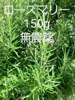 "Thumbnail of ""採れたて ハーブ ローズマリー150g 切り枝 無農薬"""