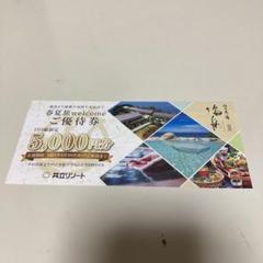 "Thumbnail of ""和歌山 浜千鳥の湯 海舟 優待券"""