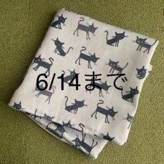 "Thumbnail of ""クッションカバー ネコ"""
