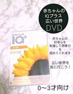 """Thumbnail of """"赤ちゃんのIQプラス 広い世界【DVD】キッズDVD 子供0~3才"""""""