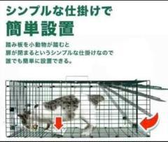 "Thumbnail of ""動物捕獲器 アニマルトラップ 野良猫 迷子猫 小動物保護 害獣被害"""