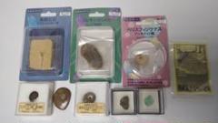 "Thumbnail of ""化石、鉱石9点セット 小魚、アンモナイト、三葉虫など"""