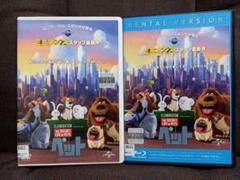 "Thumbnail of ""ペット('16米) DVD & Blu-ray レンタルアップ2枚組みセット"""