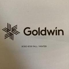 """Thumbnail of """"ゴールドウィン Goldwin スキーウェア 2020-2021 総合カタログ"""""""