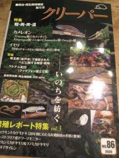 """Thumbnail of """"クリーパー 86号 爬虫類"""""""