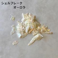 """Thumbnail of """"シェルフレーク オーロラ ネイルパーツ"""""""