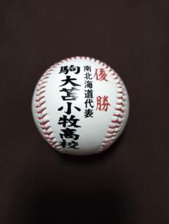 甲子園第86回大会 南北海道代表 駒大苫小牧 優勝 ボール