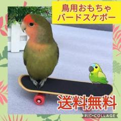 """Thumbnail of """"新品☆バードトイ☆鳥さんおもちゃ☆スケボー☆スケートボード☆インコ☆指スケボー"""""""