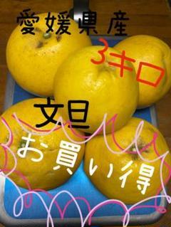 "Thumbnail of ""愛媛県産 文旦3キロ"""