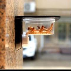 """Thumbnail of """"クレステッドゲッコーの餌皿にピッタリ爬虫類用の餌皿水皿"""""""