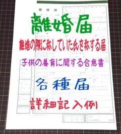 "Thumbnail of ""a-770 【普】 離婚届 各種届 詳細記入例 (お子様居る方用)"""