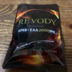 "Thumbnail of ""REVODY"""