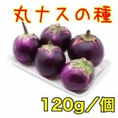 """Thumbnail of """"ベトナム 丸ナス 45粒"""""""