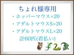 "Thumbnail of ""ちょれ様専用"""