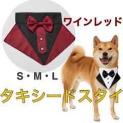 "Thumbnail of ""犬服 犬首輪 犬スタイ 猫服 猫スタイ 猫首輪"""
