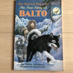 """Thumbnail of """"The Bravest Dog Ever True Story of BALTO"""""""