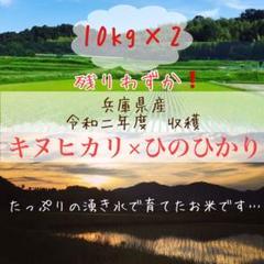 "Thumbnail of ""農家のお米食べ比べ★兵庫県産キヌヒカリ×ひのひかり 各10kg"""