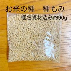 "Thumbnail of ""徳島県産あきさかり 梱包資材込み約90g 種籾 種もみ"""