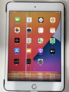 "Thumbnail of ""iPad mini 第5世代 256GB Wi-Fi Cellular ジャンク"""