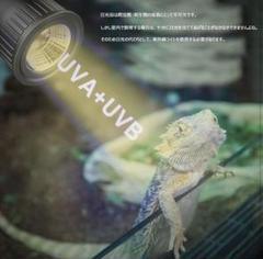 """Thumbnail of """"❤爬虫類ライト LED UVA + UVB太陽ランプ"""""""