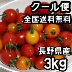 """Thumbnail of """"【3kg】【クール便】ミニトマト プチトマト アイコ 千果 長野県産"""""""