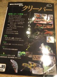 """Thumbnail of """"クリーパー 85号 爬虫類"""""""