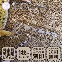 "Thumbnail of ""爬虫類 両生類 キーホルダー S/Mサイズ  名入れ 陸の生き物"""