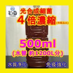 "Thumbnail of ""【免疫強化水質浄化】4倍濃縮 光合成細菌(PSB)500ml クロレラ好相性E"""