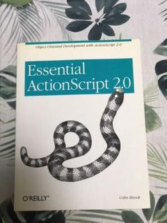 "Thumbnail of ""Essential ActionScript2.0"""