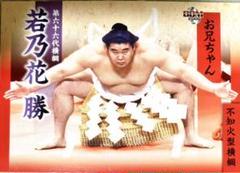 "Thumbnail of ""若乃花勝 BBM2008"""