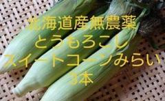 "Thumbnail of ""北海道産無農薬とうもろこしスイートコーンみらい3本"""