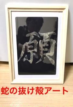 """Thumbnail of """"蛇の抜け殻 アート作品 白蛇 金運 開運 魔除け 守り神 風水"""""""