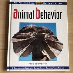 "Thumbnail of ""animal behavior"""