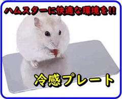 "Thumbnail of ""ハムスター用 涼感プレート ひんやり アルミクールマット 小動物用 冷却 夏対策"""