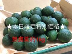 "Thumbnail of ""★特別価格★青柚子約1kg"""