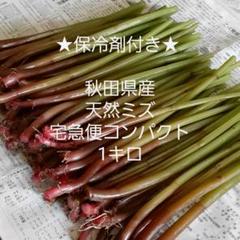 "Thumbnail of ""秋田県産 天然山菜 赤ミズ 1キロ"""