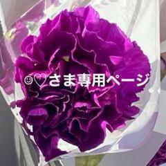 "Thumbnail of ""☺︎♡様専用ページ サンフレ鯉のぼり"""