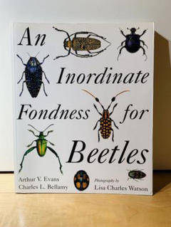 "Thumbnail of ""An Inordinate Fondness for Beetles"""