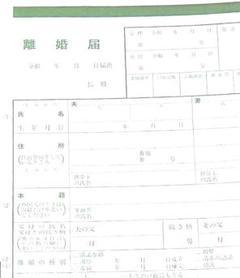 "Thumbnail of ""a-774 【普】 離婚届 各種届 詳細記入例 (お子様居る方用)"""
