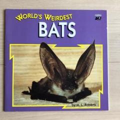 """Thumbnail of """"world's weirdest BATS"""""""