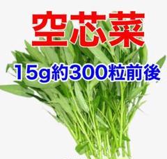 "Thumbnail of ""ベトナム 空芯菜 袋込み15g"""
