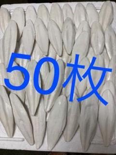 "Thumbnail of ""明石産いかの甲羅 カルトボーン カットルボーン 50枚"""