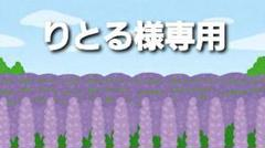 "Thumbnail of ""ドキドキ!プリキュア マスコット キーホルダー プリキュア"""