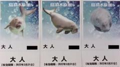 "Thumbnail of ""鳥羽水族館 チケット 3枚"""