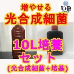 """Thumbnail of """"大変お得!簡単培養■ 光合成細菌PSB10L培養SET クロレラと共にE"""""""
