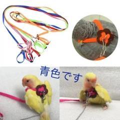 "Thumbnail of ""鳥用のハーネス&リード  青色  新品未使用品"""