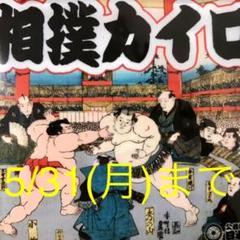 "Thumbnail of ""大相撲カイロ(2個セット)"""